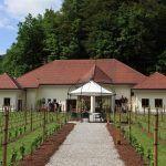 vinska-klet-mastnak65_velika